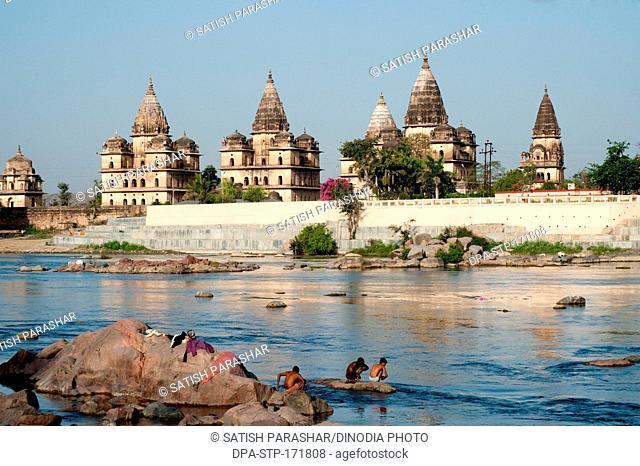 Cenotaphs on bank of betwa river , Orchha , Tikamgarh , Madhya Pradesh , India