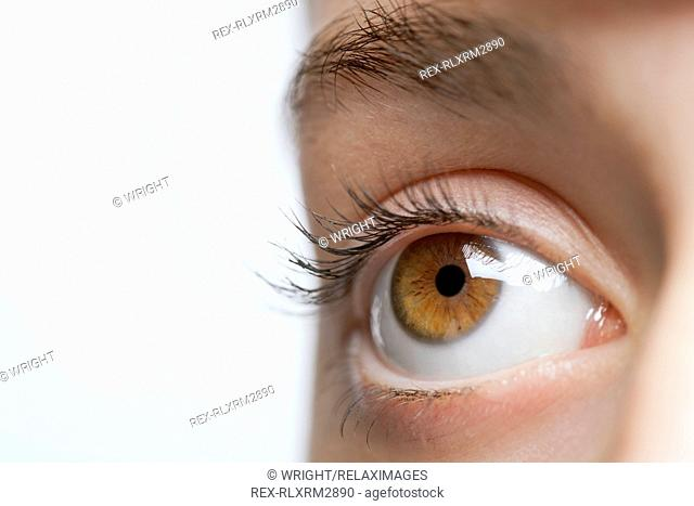Child eye close up clear healthy brown iris pupil