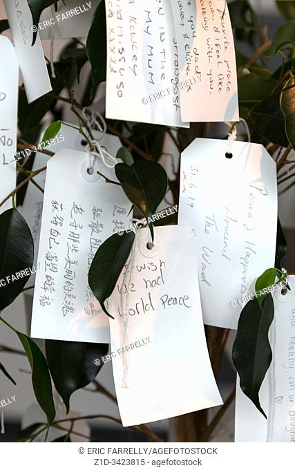 Wish tree for Liverpool. Yoko Ono. Liverpool Museum pierhead Liverpool waterfront. Enngland
