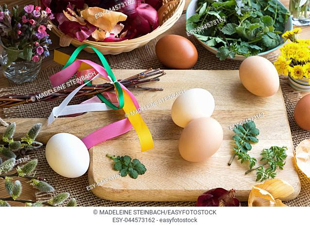 Preparation of Easter eggs for dying with onion peels: eggs, onion peels, and fresh green leaves on a table, with willow catkins