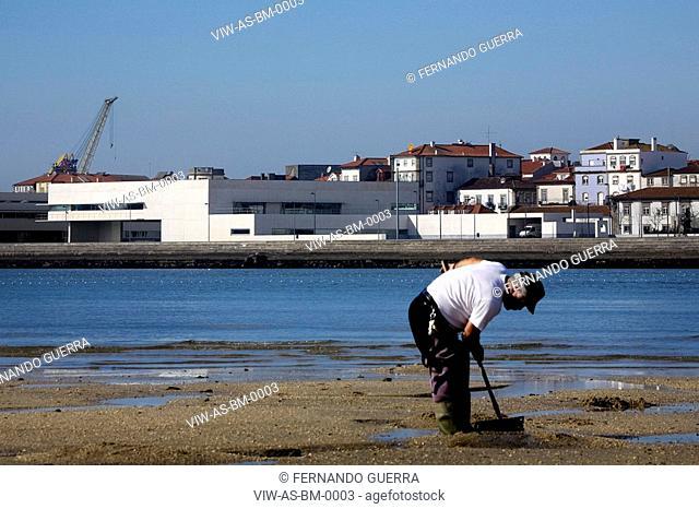 MUNICIPAL LIBRARY, VIANA DO CASTELO, PORTUGAL, Architect ALVARO SIZA, 2008