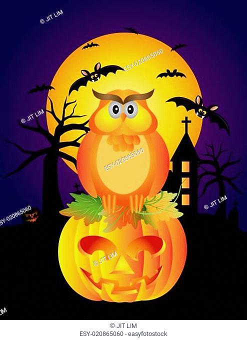 Halloween Owl Pumpkin and Bats Illustration