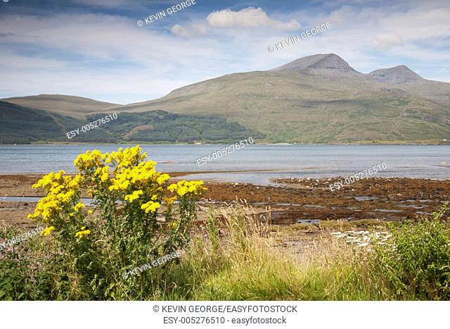 Landscape, Isle of Mull, Scotland, UK