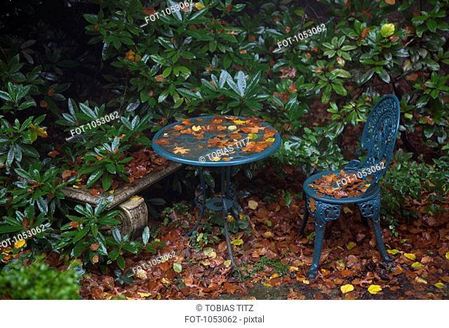 Detail of furniture in a garden in autumn
