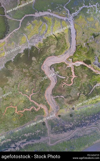 Aerial View, Marshes, Ria de Cubas, Miera river, Ribamontan al Mar Municipality, Marina de Cudeyo, Cantabria, Cantabrian Sea, Spain, Europe