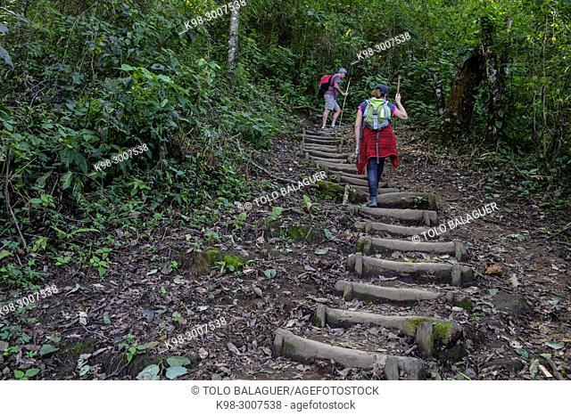 ascension al volcan San Pedro 3020 m. parque ecológico del volcán San Pedro, lago de Atitlán,departamento de Sololá , República de Guatemala, América Central