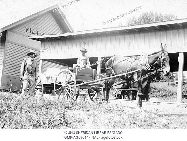 Elderly African American male and young African American male with wagon driven by mule, elderly male wearing light shirt, light pants, suspenders and hat