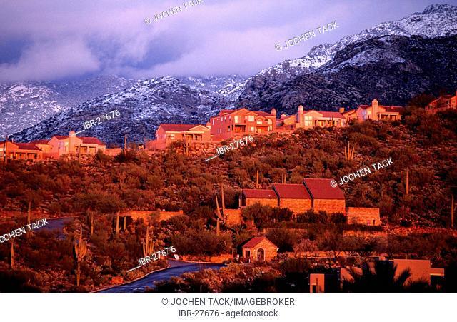 USA, United States of America, Arizona: North Tucson, housing estates, Santa Catalina Mountains