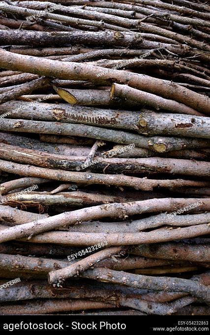 Woodpiles, Valdidentro, Lombardy, Italy