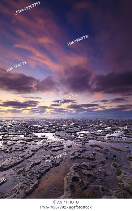 Wadden Sea, Paesens, Peazens, Moddergat, Dongeradeel, Dongeradiel, Frisia, The Netherlands, Holland, Europe