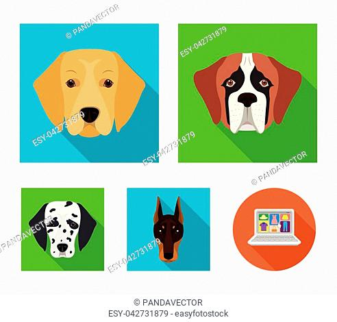 Muzzle of different breeds of dogs.Dog of the breed St. Bernard, golden retriever, Doberman, Dalmatian set collection icons in flat style vector symbol stock...