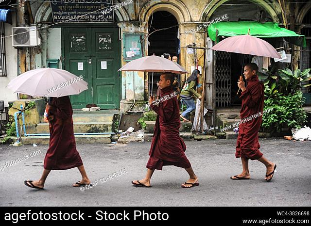 Yangon, Myanmar, Asia - A group of Buddhist monks in their saffron robes holding umbrellas walks through the streets of downtown Yangon
