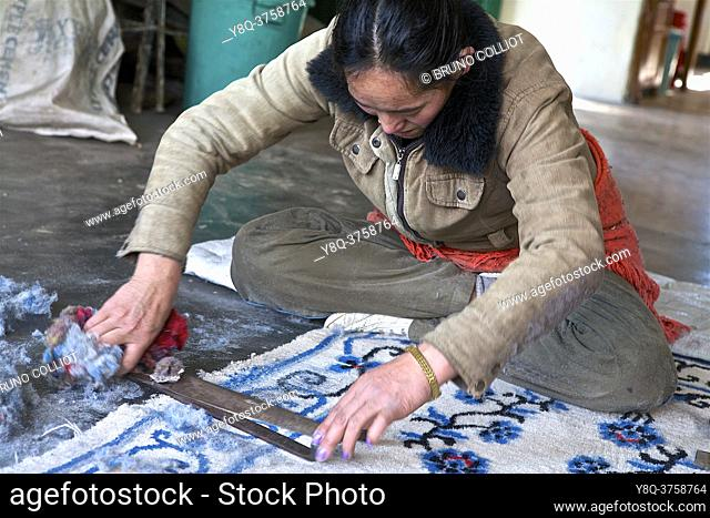 Tibetan carpet factory, scissor cut giving relief to patterns. Mac-Léod-Ganj, HP, india