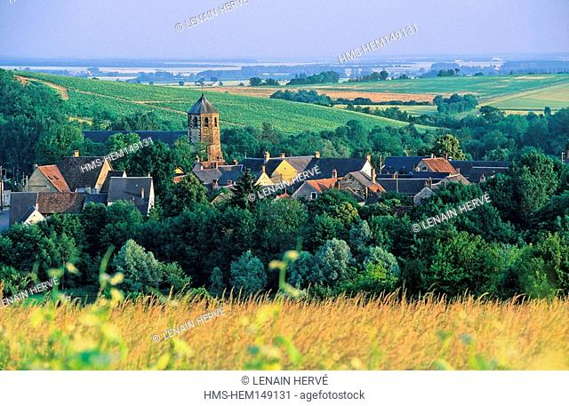 France, Cher, Berry, Morogues, village and AOC Menetou-Salon vineyard in Spring