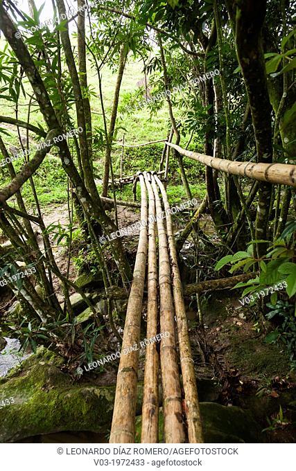 The riverside country, by Filobobos River, Veracruz, Mexico
