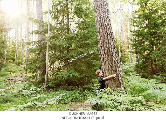 Boy embracing tree trunk in forest