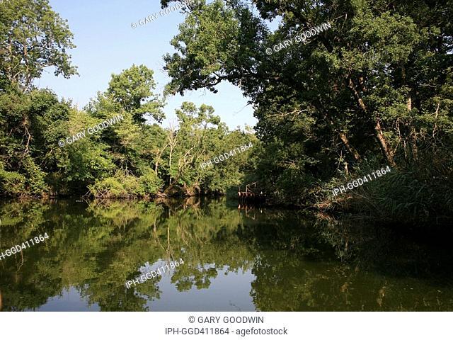 Scene on the Veleka River close to the Bulgarian/Turkish border