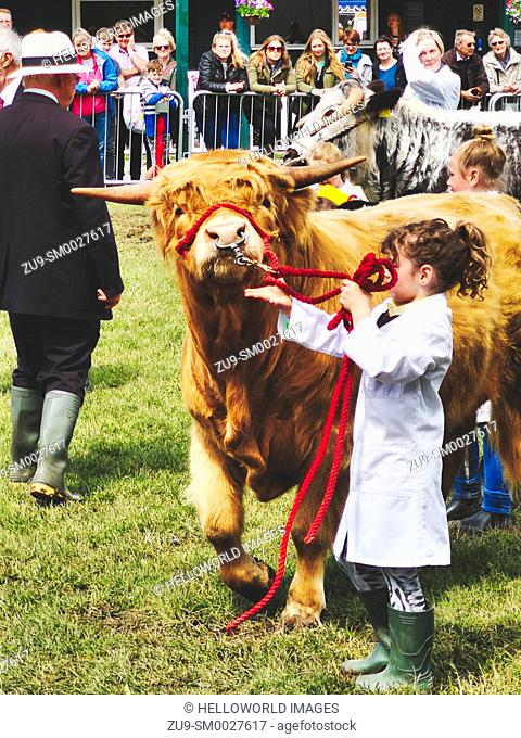 Young highland cattle handlers, Three Counties Show 2019, Malvern, Worcestershire, England