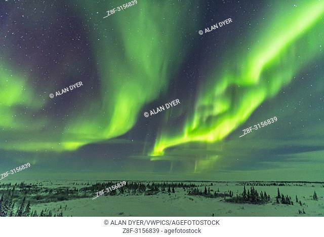 Parallel curtains of aurora as a display starts up at the Churchill Northern Studies Centre, Churchill, Manitoba. With the 20mm Sigma lens