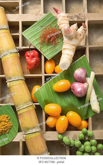 Kumquats, vegetables, spices and sugar cane in type case