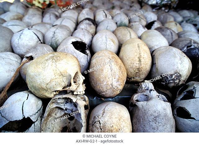 Massacred Skulls