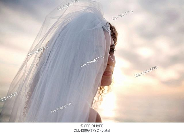 Portrait of young woman wearing wedding dress and veil