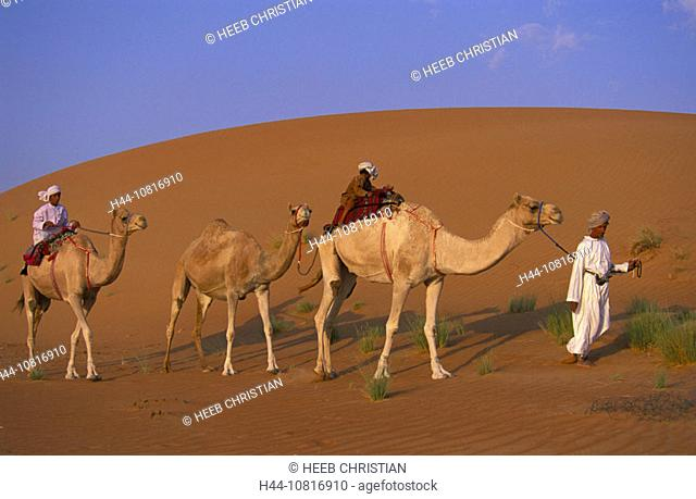 10816910, bedouin, family, camel, camels, caravan, desert, sand dunes, Wahiba Sands, near Al Qabil, Oman, Arabian peninsula