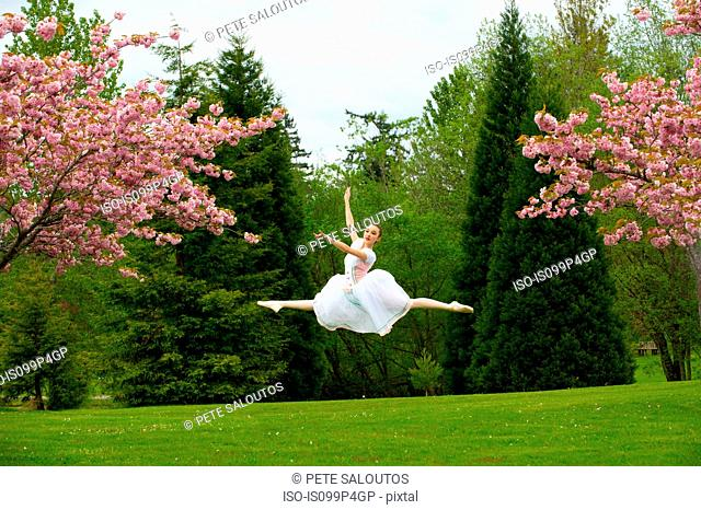 Ballerina doing grand jete
