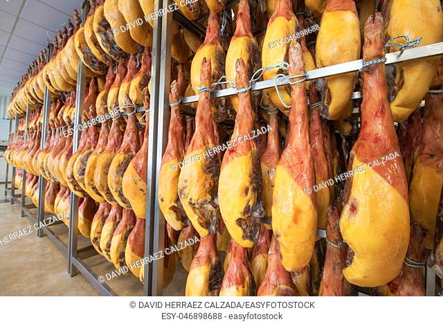 Jamon serrano Spanish ham cellar. Food industry