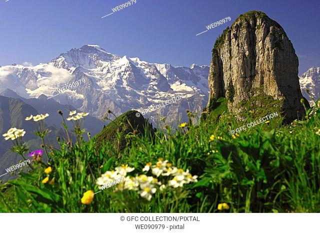 View at the peak of the Jungfrau Top of Europe, peak Daubenhorn right, Bernese Oberland, Switzerland