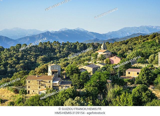 France, Corse-du Sud (2A), Prunelli region, Mare e Monti Sud hiking trail, between Porto Pollo and Coti-Chiavari, Coti-Chiavari village