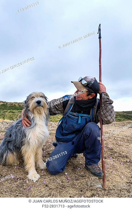 Shepherd, Santa Orosia Range, Jacetania, Huesca, Aragon, Spain