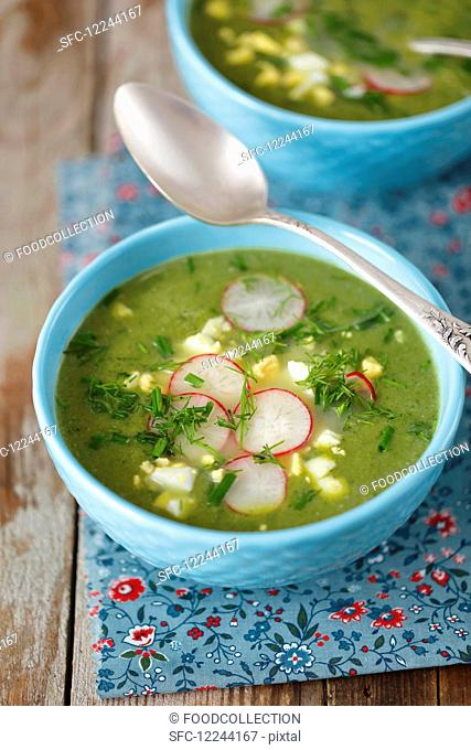 Spinach soup with egg and red radishes