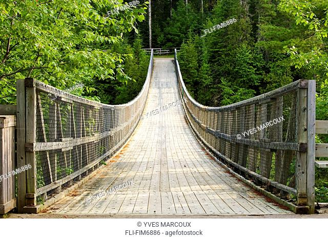 Suspension bridge over Rimouski River, Hell's Gate Canyon, Bas-Saint-Laurent region, Saint-Narcisse-de-Rimouski, Quebec