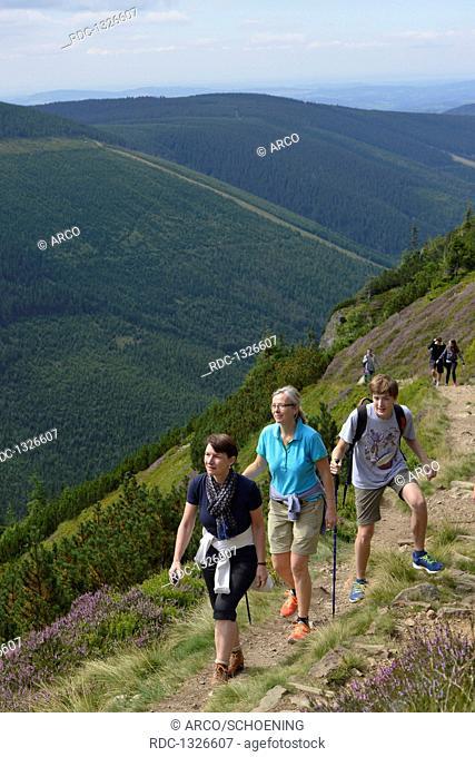 Wanderweg zum Berg Krakonos, Riesengebirge, Tschechien