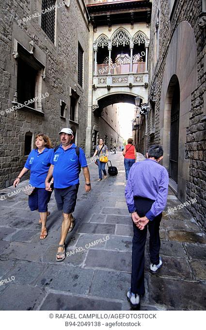Carrer del Bisbe street, Gothic quarter, Barcelona, Catalonia, Spain