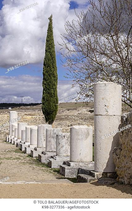 Termas Monumentales, parque arqueológico de Segóbriga, Saelices, Cuenca, Castilla-La Mancha, Spain