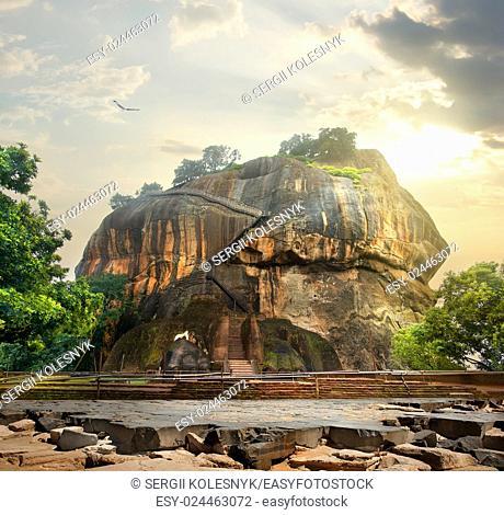 Bird over mountain of Sigiriya in Sri Lanka