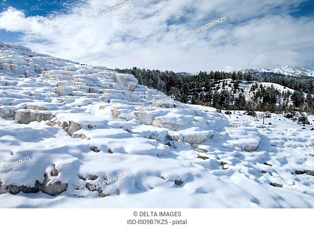 Mammoth Hot Springs under snow, Yellowstone National Park, Wyoming, USA