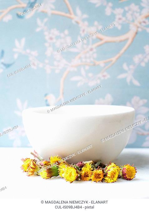 Dandelions by ceramic bowl