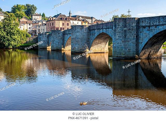 Nouvelle Aquitaine - Limousin - Haute-Vienne - Limoges - The Saint-Etienne bridge on the Vienne river
