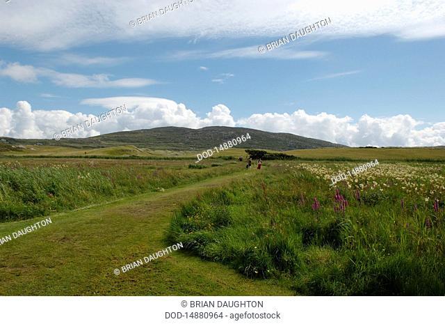 Republic of Ireland, County Kerry, Iveragh Peninsula, Derrynane, landscape