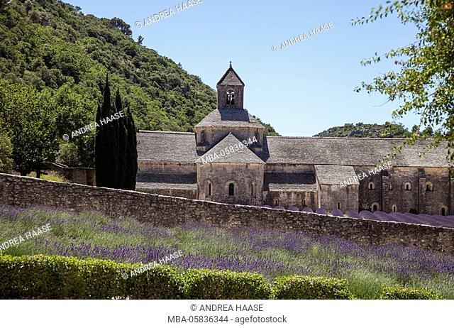 Cloister Notre lady de Sénanque, Provence