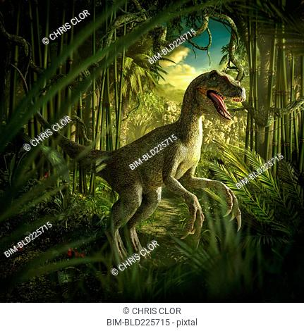 Velociraptor dinosaur in lush green jungle
