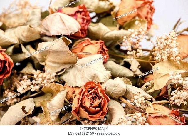 bouquet of dried roses with leaves