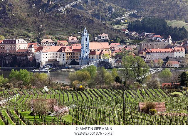 Austria, Lower Austria, Wachau, Duernstein, View of town with Danube river and vineyard in foreground