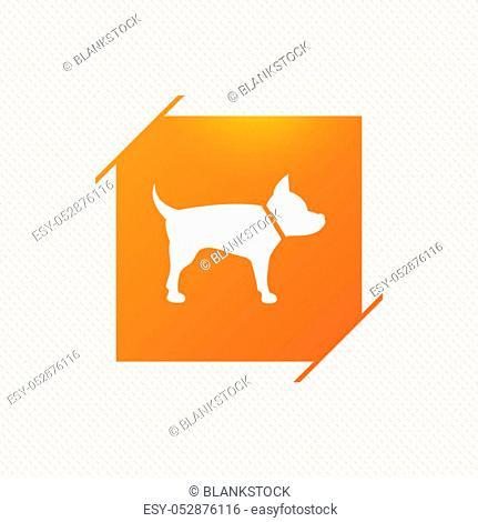Dog sign icon. Pets symbol. Orange square label on pattern. Vector