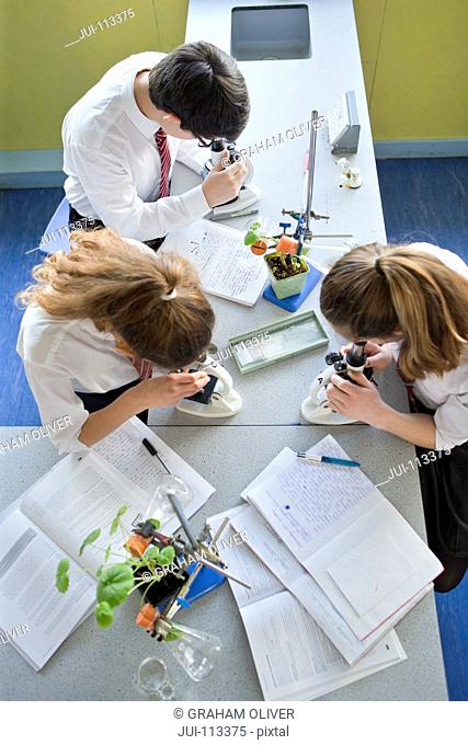 High school students at microscopes conducting scientific experiment in biology class