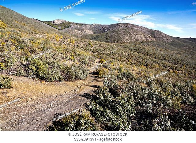 Track in the Iron canyon in the Sierra Norte. Patones. Madrid. Spain. Europe