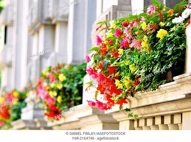 Hotel flower boxes in Northumberland Avenue in London, England, on a Summers day